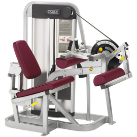 CYBEX EAGLE SEATED LEG CURL