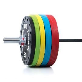 15kg -33lbs Elite Bumper...